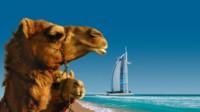 AIDA Orient Kreuzfahrt  Dubai & Arabische Emirate