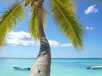 AIDA Karibische Inseln Kleine und große Antillen